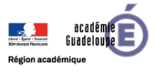 logo_web_guadeloupe