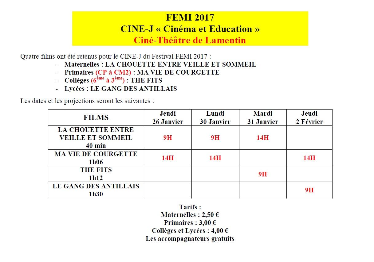 programme FEMI 2017