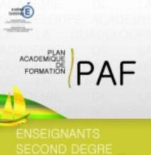 paf12.jpg